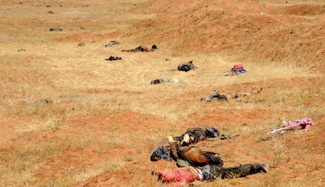 Tens of Al-Nusra Front terrorists were killed