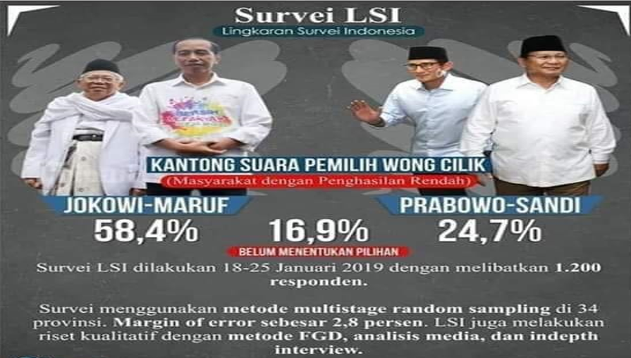Suvery LSI